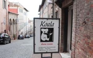 koala negozio oggettistica - urbino